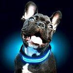 LED Šviečiantis antkaklis šunims