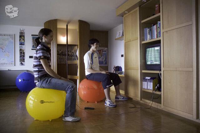 """Kamuolys sėdėjimui ir mankštai """"Sitsolution Standart"""" Ø75cm."""