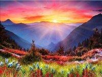 """Tapybos pagal skaičius rinkinys """"Sunset"""", 40x50 cm"""