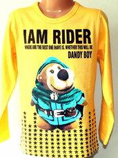 Geltoni pilki, mėlyni džemperiai berniukams už neįtikėtinai mažą